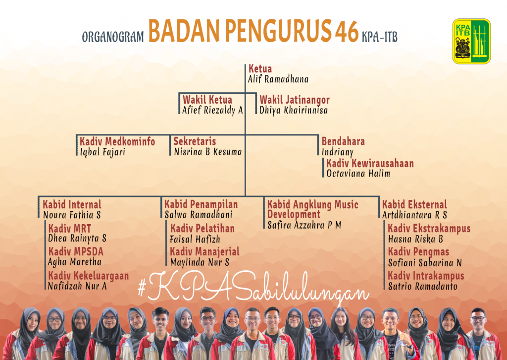 ORGANOGRAM rgb